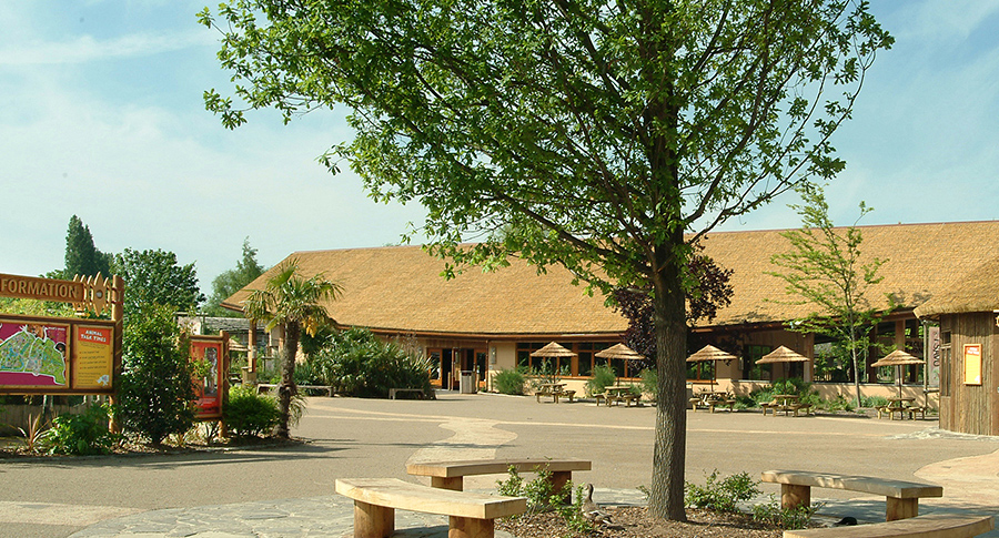 Tsavo Cafe Chester Zoo Africa Roofing Uk